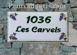 PLAQUE DE MAISON DECORATIVE FAIENCE DECOR GRAPPES DE RAISIN