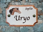 HOUSE PLAQUE STYLE SMALL MODEL HORSE HEAD PAINT BROWN TEXT