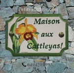 HOUSE PLAQUE STYLE SMALL MODEL CATTLEYAS FLOWERS PAINT