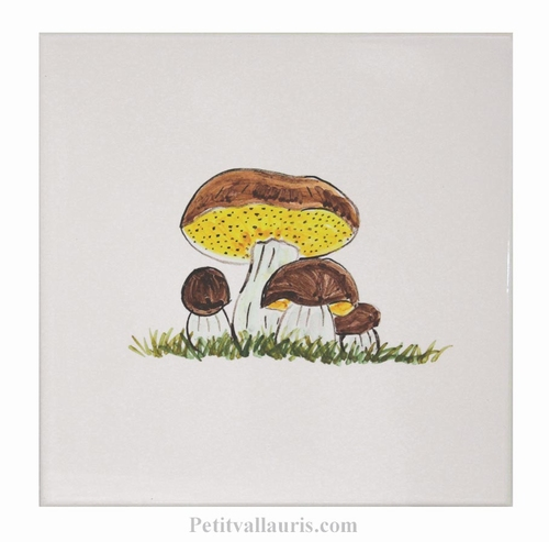 HAND MADE EARTENWARE WALL TILE  WITH MUSHROOMS CEPE PATTERN
