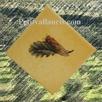 CICADA DECORATING ON YELLOW TILE DIAGONAL LEFT MODEL