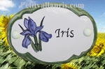 CERAMIC OVAL DOOR PLAQUE WITH IRIS FLOWER PANTING