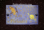HOUSE PLAQUE RECTANGLE MODEL GALAXY AND SATURN + OWL DECOR