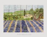 FRESCO TILES CERAMIC LAVANDER LADSCAPE DECORATION 50X70